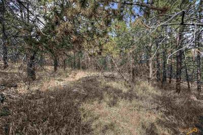 Residential Lots & Land For Sale: 3350 Skyline Dr