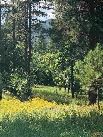 Sturgis Residential Lots & Land For Sale: Tbd Sunflower Circle