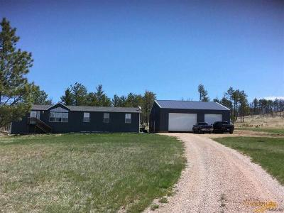 Manufactured Home For Sale: 25492 Mt Shadow Rd