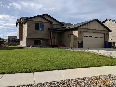 Rapid City Single Family Home For Sale: 827 Haakon