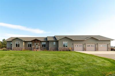 Rapid City Single Family Home For Sale: 13887 Clydesdale Rd