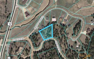 Residential Lots & Land For Sale: Lot 14 Placer Pl