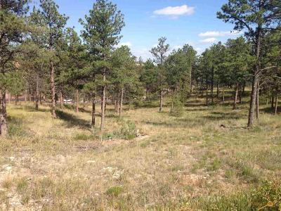 Rapid City Residential Lots & Land For Sale: Tbd Pine Hills Dr