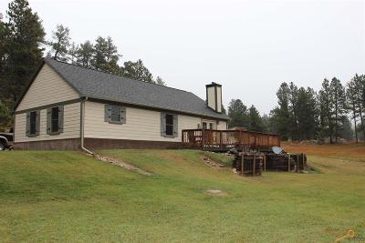 Custer SD Single Family Home For Sale: $329,900