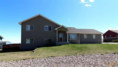 Rapid City Single Family Home For Sale: 2725 Wild Horse Dr