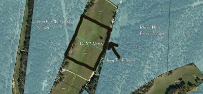 Residential Lots & Land For Sale: Tbd Sidney Park Rd