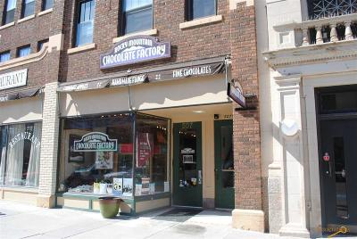 Rapid City Business Opportunity For Sale: 507 6th St