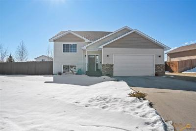 Summerset Single Family Home For Sale: 10090 Willmington