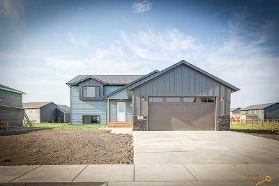 Single Family Home For Sale: 527 Antietam Dr