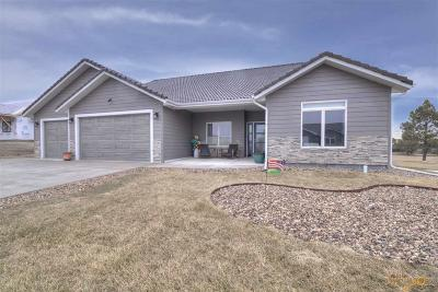 Rapid City Single Family Home For Sale: 3618 Ping Dr