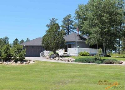 Custer Single Family Home For Sale: 25233 Ridgeview Rd