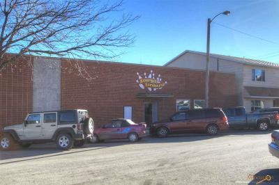 Sturgis Business Opportunity For Sale: 910 1st