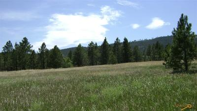 Residential Lots & Land For Sale: Tbd Mt Shadow Rd