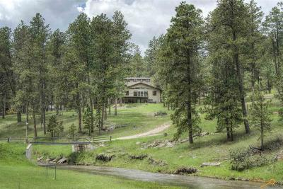 Rapid City Single Family Home For Sale: 13741 Chipmunk Pl