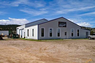 Commercial For Sale: 27689 Hwy 385