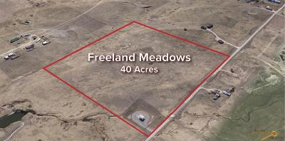 Rapid City Residential Lots & Land For Sale: Tbd Country Rd