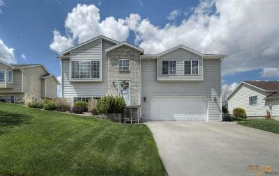 Rapid City Single Family Home For Sale: 1120 Park Hill Dr