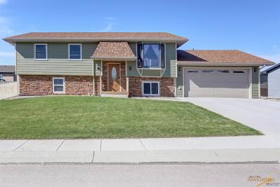 Rapid City Single Family Home For Sale: 310 Lone Soldier Ct