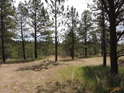 Residential Lots & Land For Sale: Lot 2 Concho Trail