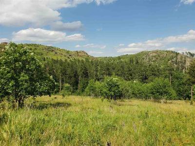 Residential Lots & Land For Sale: Tbd Klondike Rd