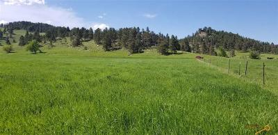 Residential Lots & Land For Sale: Tbd Deerview Rd