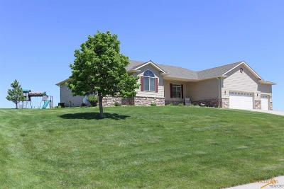 Rapid City Single Family Home For Sale: 5216 Bethpage Dr