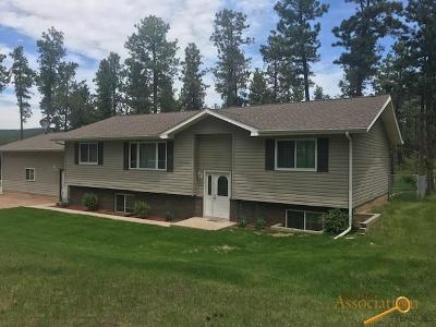Rapid City Single Family Home For Sale: 22556 Potter Rd