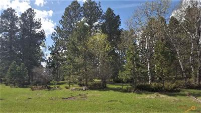 Residential Lots & Land For Sale: Lot 1