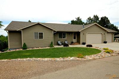 Sturgis Single Family Home For Sale: 1251 Evergreen Dr