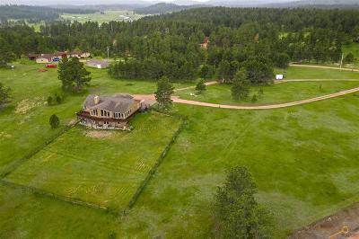 Single Family Home For Sale: 25278 Wittrock Rd