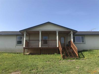 Newell SD Single Family Home For Sale: $299,900