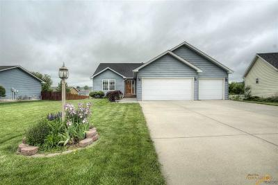 Summerset SD Single Family Home For Sale: $295,000