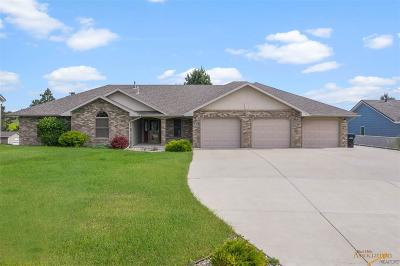 Rapid City Single Family Home For Sale: 820 Alta Vista Dr