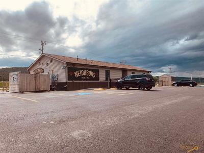 Summerset Business Opportunity For Sale: 7280 Freedom Ct