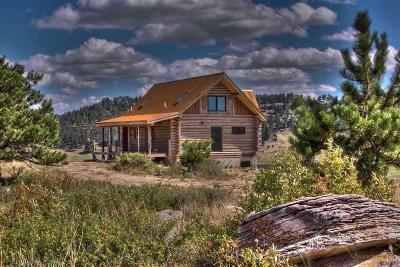 Single Family Home For Sale: 19162 Star Gazer Lane