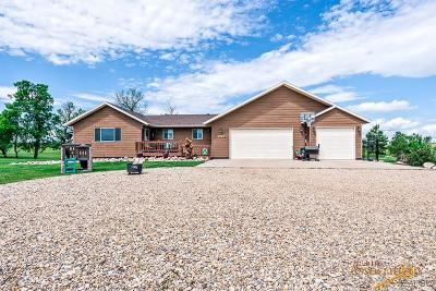 Single Family Home For Sale: 10733 Hay Creek Ln