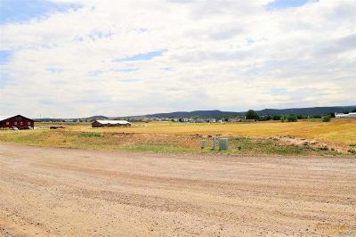 Summerset Commercial Lots & Land For Sale: Tbd Infinity Dr