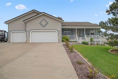 Rapid City Single Family Home For Sale: 734 Alta Vista Dr
