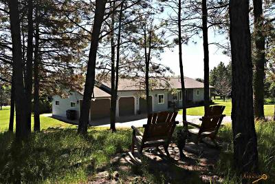Rapid City Single Family Home For Sale: 4782 Cliff Dr