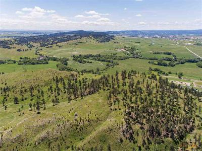 Rapid City Residential Lots & Land For Sale: 7101 Marvel Mountain Ridge Rd