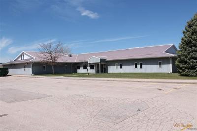 Rapid City Commercial For Sale: 2821 Plant