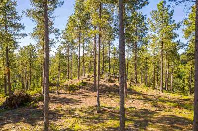 Residential Lots & Land For Sale: 21822 Shiprock Rd