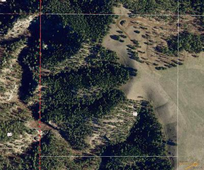 Rapid City Residential Lots & Land For Sale: Tbd Sheridan Lake Rd