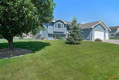 Rapid City Single Family Home For Sale: 131 Alta Vista Dr