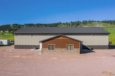 Commercial For Sale: 11720 Quaal Rd