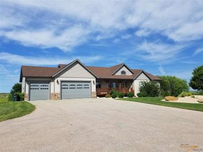 Single Family Home For Sale: 22802 Gateway Dr