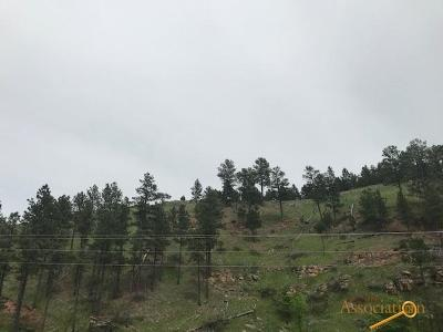 Rapid City Residential Lots & Land For Sale: Tbd Nemo Rd