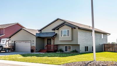 Single Family Home For Sale: 785 Radial Ln