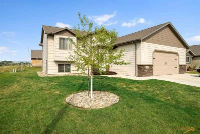 Rapid City Single Family Home For Sale: 2911 Olive Grove Ct