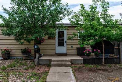 Single Family Home For Sale: 10610